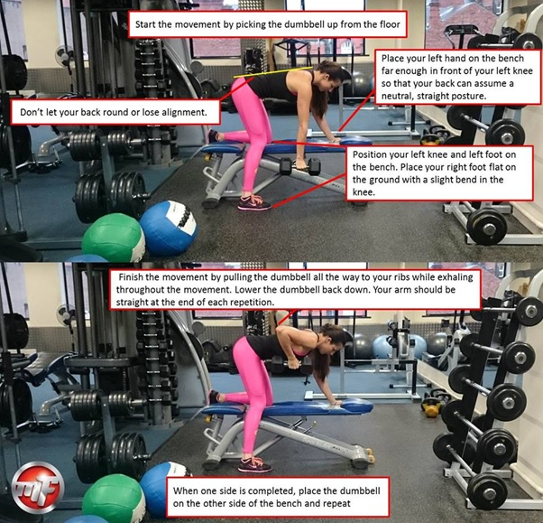 The Single Arm Dumbbell Row Weight Lifting Exercise Tips