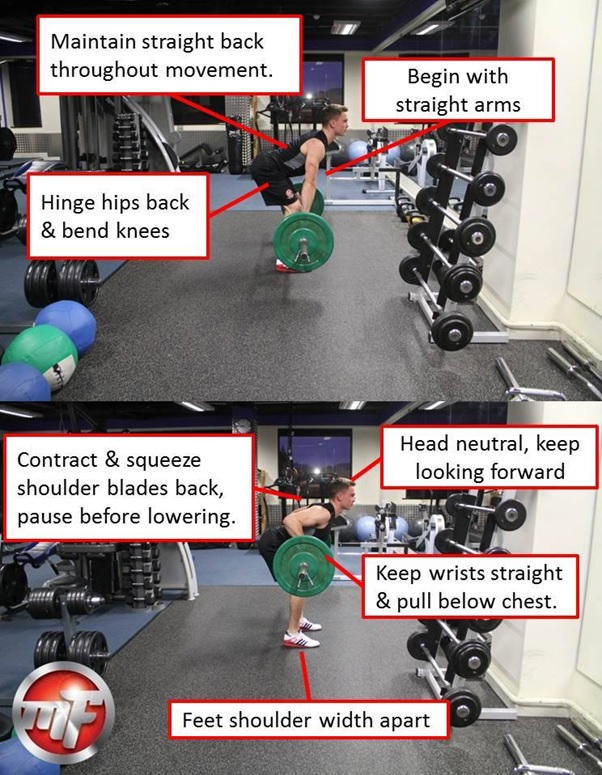 The Barbell Row Weight Lifting Exercise Tips