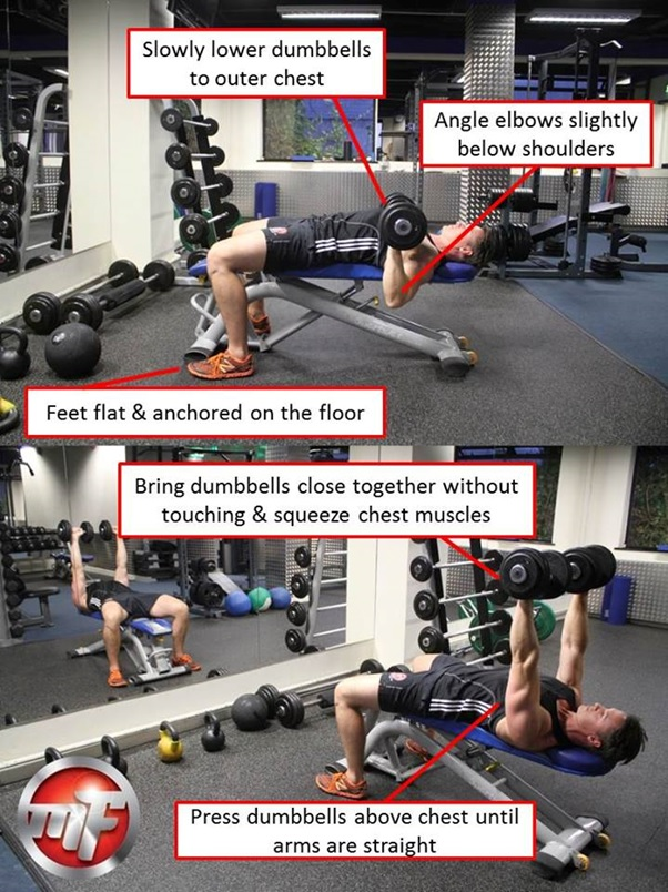 The Dumbbell Bench Press Weight Lifting Exercise Tips